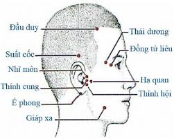đầu cổ mặt 2