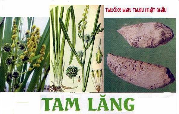 tam-lang_02_1